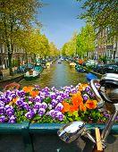 Bike And Flowers On A Bridge In Amsterdam