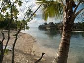 Moorea Beach Huts