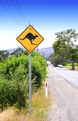 Kangaroo Crossing Sign Along Australian Road.