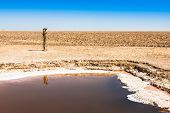 foto of tozeur  - Chott el Djerid salt lake in Tunisia Africa - JPG