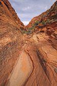 Narrow Canyon In The Desert