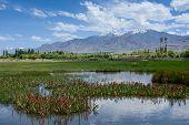 Lake landscape at high altitude