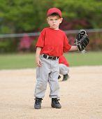 Little League Baseball Player