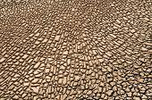Arid Soil