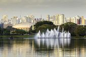 View of Sao Paulo city from Ibirapuera Park. The Ibirapuera is one of Latin America largest city parks.