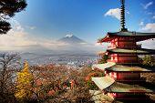 Fuji Mountaion with nice maple