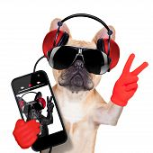 image of lp  - fawn french bulldog listening to a music player with peace or victory fingers isolated on white background - JPG