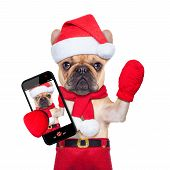 stock photo of dog christmas  - fawn bulldog dog as santa claus on christmas taking a selfie and waving with hand isolated on white background - JPG