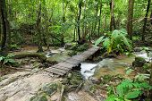 picture of rainforest  - Waterfall with small bridge in the rainforest of Thailand - JPG