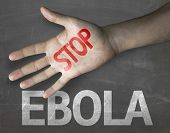 Educational and Creative composition with the message Stop Ebola on the blackboard