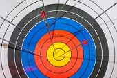 picture of diligent  - arrows missed target - JPG