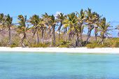 image of gulf mexico  - blue isla contoy in mexico froath and blue foam the sea drop sunny day wave  - JPG