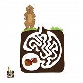 foto of groundhog day  - Vector Maze - JPG