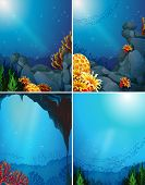 stock photo of coral reefs  - Four underwater scenes and coral reef - JPG