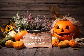 stock photo of halloween  - Halloween still life with pumpkins and Halloween holiday text - JPG
