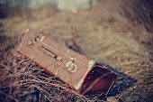 image of old suitcase  - Old fashioned forgotten a suitcase lie forgotten in a faded grass - JPG