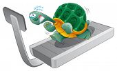 Turtle fitness. Funny cartoon and vector character