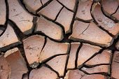 Pattern of cracked and dried soil under the Sun