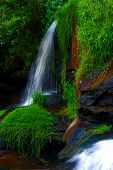 Living Waters Waterfall