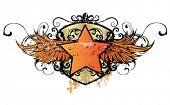 Постер, плакат: Логотип звезда