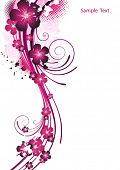 Pink flower background.