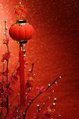 Chinese New Year Dekoration Rote Laterne und Siverbud Weide auf festlich Hintergrund.