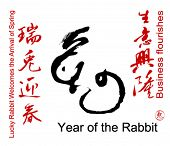pic of rabbit year  - Collection of Chinese Spring Festival Words - JPG
