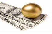 Golden Egg And Dollars