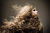picture of terrific  - Portrait of the beautiful woman with long curly hair - JPG