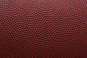 Detailed macro of american football