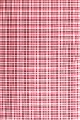 Detailed red picnic cloth - The tablecloth is new, clean and flat without creases