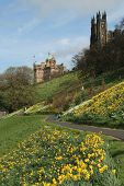 Edinburgh From The Princes Street Gardens