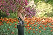 stock photo of 24th  - taken at ottawas famed tulip festival on may 24th - JPG