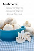 picture of crimini mushroom  - Mushrooms in the blue pot on the blue gingham tablecloth - JPG
