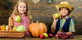 Elementary School Fall Festival Idea. Celebrate Harvest Festival. Kids Girl Boy Fresh Vegetables Har poster