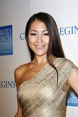 LOS ANGELES, CA - DEC 3: Diana Wu at the 3rd Annual 'Change Begins Within' Benefit Celebration prese
