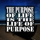 Inspirational Quotes The Purpose Of Life Is The Life Of Purpose, Positive, Motivational poster