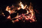 Night bonfire on a blurred background. Bright bonfire. Blurred focus. Bonfire at night. poster