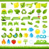 Eco Set, Isolated On White Background, Vector Illustration