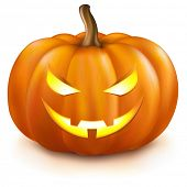 Pumpkin, Isolated On White Background