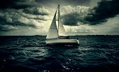 Sailing Boat Sailing, Detail Of Transport By Water poster