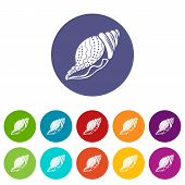 Nature Shell Icon. Simple Illustration Of Nature Shell Icon For Web poster