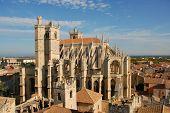 Catedral St apenas e Pasteur de Narbona
