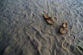 Chinelos de praia