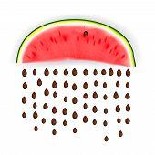 Slice of nice fresh watermelon