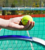 Close Up Of Tennis Racquet And Ball In Hands