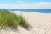 stock photo of dune  - Dunes on a sunny beach near the beach - JPG