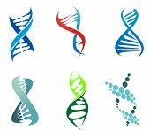 DNA and molecules