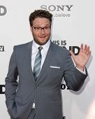 LOS ANGELES - JUN 3:  Seth Rogen arrivesa at the