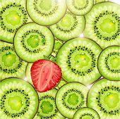 Kiwi und Erdbeeren Hintergrund mit Sonne und Wasser Tropfen für frischen sommerlichen Design. Vektor illust